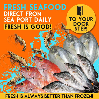 Qoo10 10 types of fresh seafood direct from sea port for Daily fresh fish