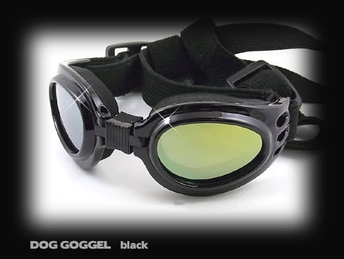 From Japan Doggles List qoo10 sgitemdirect xwqCEpFa