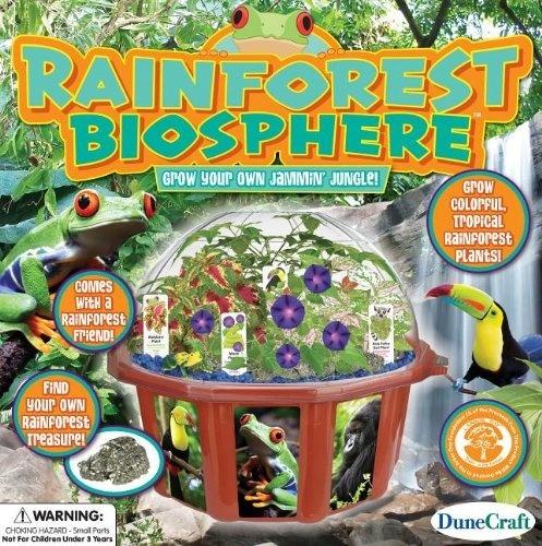 Zufällige Dinosaurier Figurine To Enjoy High Reputation In The International Market Junior Dschungel Dino Eins Geliefert