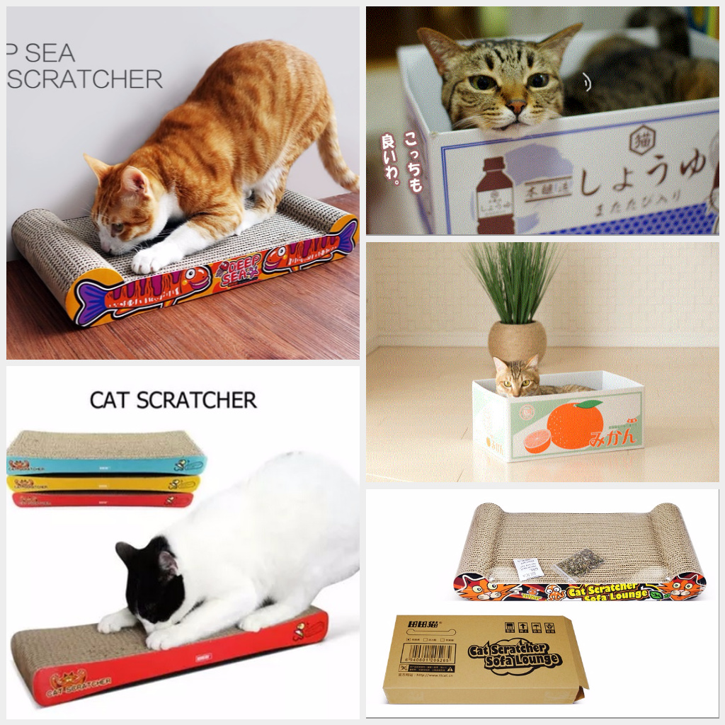 Http Item Cuddly Paws 100pcs Value Pack Elenco Snap Circuits Battery Eliminator Best Price In India As On 2016 741302857g 0 W St G