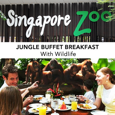 Qoo10 New Travel Singapore Zoo Jungle Buffet Breakfast