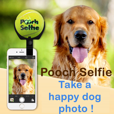 qoo10 pooch selfie dog selfie selfie stick animal selfie dog supplies dog st mobile devices. Black Bedroom Furniture Sets. Home Design Ideas