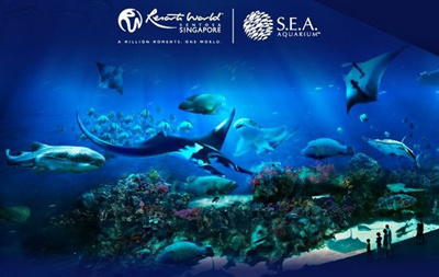 Additional child add-on bundle @S$22, includes 1x S.E.A. Aquarium One-Day Ticket + 1x The Maritime Experiential Museum One-Day Ticket + 1 storybook worth S$16 Promo ends 6 Jan Only valid for Singapore Residents with valid Republic of Singapore issued birth certificate/Photo National ID/Work Permit/Student Pass.