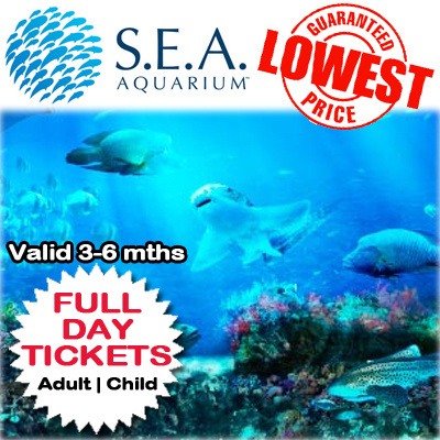 Just use the SEA Aquarium vouchers when you book your time and enjoy the beautiful world of glass-ceiled marine tank. Submit a coupon and help others to save! Help others save on SEA Aquarium by submitting a coupon!