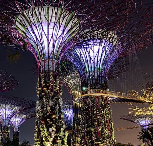 Garden By The Bay Admission Ticket buy ?gardensthe bay?e-ticket for tourists only one day