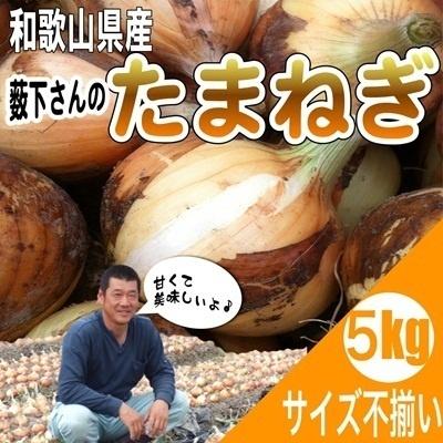 <産地直送>和歌山県産特別栽培  新たまねぎ サイズ不揃い 5kgの画像