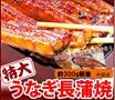 ◆特大うなぎ蒲焼1尾 約300g前後!!いつものウナギでは満足できない!特大のうなぎをふっくら柔らかく焼き上げました。贅沢にうな丼、ひつまぶし、うまき等いろんな食べ方でお召し上がりください。※商品は有頭うなぎ、中国産の為特価です