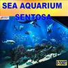 {TRAVELPLUS} SEA AQUARIUM SENTOSA + MARITIME MUSEUM (OPEN DATED E-TICKET) CHEAP TICKET.