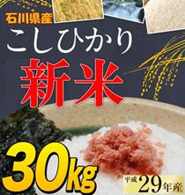 🌟クーポン使えます!新米!29年産 石川県産 ブランド米 選べる!29年産 コシヒカリ ゆめみづほ30kg玄米・精米27kg選べます*9月20日頃からの発送となります。
