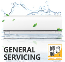 LION CITY AIRCON GENERAL SERVICING! SPECIAL PROMOTION PRICE AT $30!