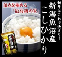 ★3999円で買える!クーポン使えます!新米29年産 新潟 魚沼産コシヒカリ5kg★魚沼地方は日本一の良質米産地として有名です。粘り・腰の強さ・艶・甘味十分のコシヒカリです。