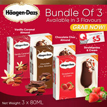 Haagen Dazz -Special 3 In 1 Bundle