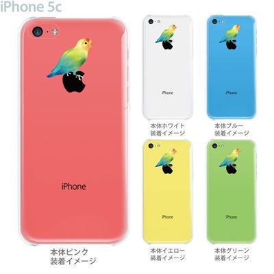 【iPhone5c】【iPhone5c ケース】【iPhone5c カバー】【ケース】【クリア カバー】【スマホケース】【クリアケース】【イラスト】【クリアーアーツ】【色あざやかな鳥】 08-ip5c-ca0105の画像