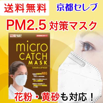 郵送でお届け送料無料お試しPM2.5 マスク N-95【茶色】 花粉症ミクロキャッチ マスク 1枚入り73552の画像