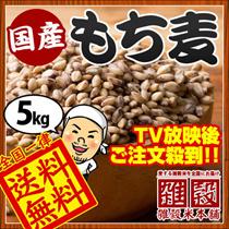 【クーポン使用で高級もち麦が5kg4300円!!】1kg860円【送料無料】厳選国産 もち麦5kg TV放送後注文殺到! 国産ダイシもち麦 [ ダイシモチ もち麦 無添加 もちむぎ]