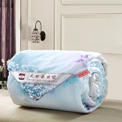 Silk Bed Linen Singapore ~ malmod.com for . : silk quilt singapore - Adamdwight.com