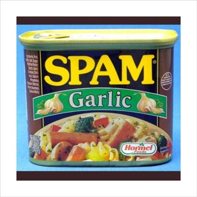 スパム ガーリック 340g 1缶 SPAM GALIC ランンチョンミートの画像