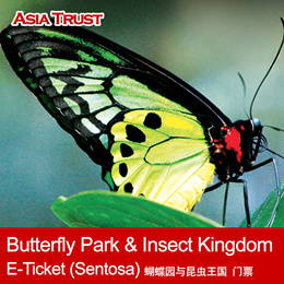 Butterfly Park and Insect Kingdom Sentosa Singapore / E-Ticket / with Bird Feeding 蝴蝶公园与昆虫王国 可加喂鸟