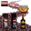 Avanti Coffee Bean 500g/250g/Chocolate Powder 1kg/Balsamico Vinegar 250ml