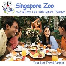 【99 TRAVEL】Singapore Zoo Half Day Tour  新加坡动物园半日游