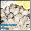 Frozen Korea Oyster Meat /Without Shell/400g /22-26pcs /BIG/ PRODUCT OF KOREA /WHOLE SALE PRICE !