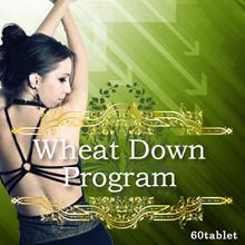 『ウィートダウンプログラム』大絶賛DIET成分【ウィートグラス】世界で大流行中!!痩せることも、太ることも全ては『腸』次第!