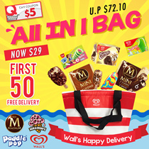 EveryThing In 1 Bag Summer Ice Cream Special  Free Delivery For First 50