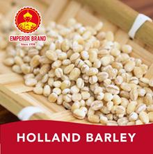 ? Holland Barley 500gm
