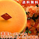 【母の日ギフト】【送料無料】濃厚チーズケーキとオレンジカーネーション鉢植えセット