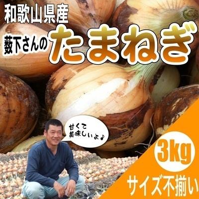 <産地直送>和歌山県産特別栽培  新たまねぎ サイズ不揃い 3kgの画像