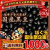 国産 香川県産 黒大豆 黒豆 500g 送料無料 【ぼくたま誕生祭】