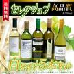 クーポン使用可能★セレクション 白ワイン 5本セット ( スペインワイン 1本 フランスワイン 1本 イタリアワイン 1本 チリワイン 2本)計750ml×5本