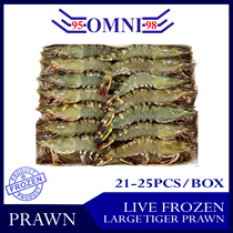 [Omni Frozen] Live Frozen Large Tiger Prawn 26/30 pcs per box