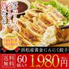 【送料無料】 国産野菜 国産豚肉使用 浜松産黄金にんにく肉餃子 60個 1.2kg 中華 セット 約60個分 約10人前!餃子 送料無料 ぎょうざ