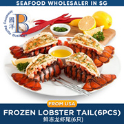 FROZEN PREMIUM GRADE LOBSTER TAIL / 6 pieces/ rich in Omega-3 fatty acid