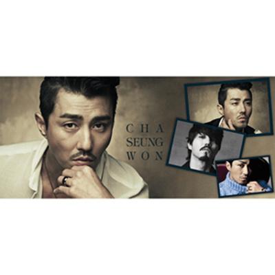 《韓流Star チャスンウォン 》 Cha Seung-won タオルの画像