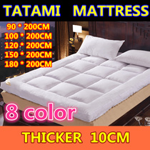 NEW 10CM THICKNESS Comfortable Pad / Mattress Protection