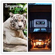 【MY TRIP】Singapore Zoo + Night Safari E-Tickets Combo  (include tram ride) 新加坡动物园+河川生态园