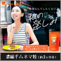 お徳用濃縮ギムネマ粒(約3ヶ月分)■ オーガランド ogaland
