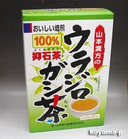山本漢方製薬ウラジロガシ茶(抑石茶)100% 5g×20包  10P13oct13_b 【RCP】