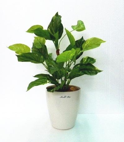 ●代引き不可送料無料ポトス人工観葉植物 造花の画像