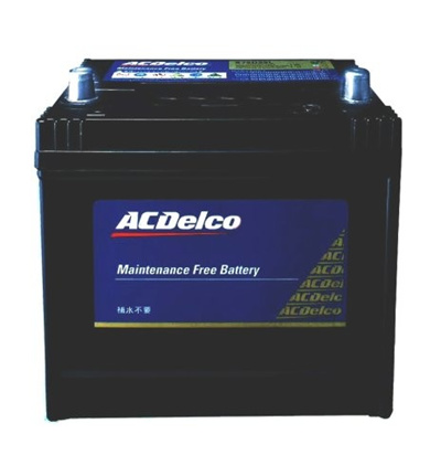 ACDelco[エーシーデルコ]輸入車バッテリー[MaintenanceFreeBattery]79-6MF