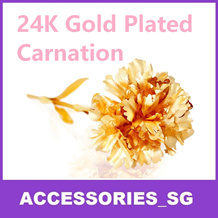 ♣WHILE STOCKS LAST♣ MOTHER DAY GIFT 24K GOLD PLATED CARNATION PERFECT GIFT FOR THIS MOTHERS DAY FLOWER
