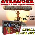Africa Black Ant SUPLEMEN PRIA 100% Herbal Tanpa Efek Samping atau Ketergantungan! 1 Kapsul utk kepuasaan 1 Minggu | Semut Hitam Afrika | Tahan Lama / Stronger