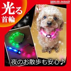 犬 首輪 光る LED 光る首輪 キラキラ光るバンド S/M/Lサイズ アームバンド 夜間 散歩 ジョギング ウォーキング きらきらバンド 事故防止 交通安全 ER-DGCL [ゆうメール配送][送料無料]