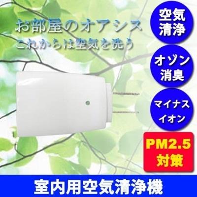 空気清浄機 花粉 携帯室内型 PM2.5 対策に マイナスイオン オゾン プラズマ 脱臭 アロマ 除菌 花粉症 花粉対策 売れ筋の画像
