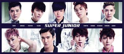 Super Junior スーパージュニア タオル 【 イトゥク  ヒチョル  イェソン ソンミン ウニョク  ドンヘ  シウォン  リョウク  キュヒョン】の画像