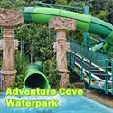 [Christmas Special] Adventure Cove Waterpark - RESORTS WORLD SENTOSA 水上探险乐园