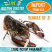Limited 100Sets[Evergreen Seafood] Bundle of  500g x 2 Live Boston Lobster