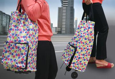[Persiapan Liburan] Dompet Trolley (bisa jadi trolley/dompet)|Foldable Shopping